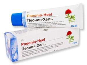 Пеония-Хель Paeonia-Heel