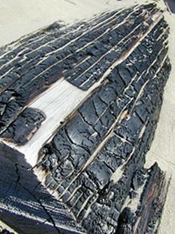 Carbo animalis (Уголь животный)